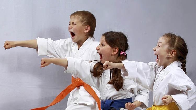 Karate and Jujitsu Registration